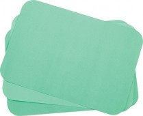 "101-TCBGR Primo Tray Cover Ritter ""B"" Green 8.5 x 12.25 (1000)"