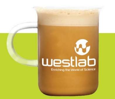 551-3310 Westlab Beaker Mug with handle, 300ml