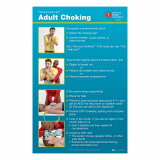 15-1027 HS Ad Choking Poster 3pk