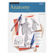 Beginner's Guide: Anatomy Everything an Artist Should Know by Walter T. Foster