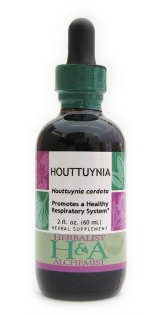 Houttuynia Extract