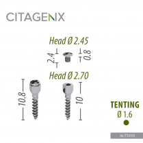 16-TT-010 Tenting Screw 1.6x10 mm