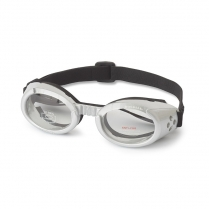 ILS 2 Silver Frame with Clear Lens