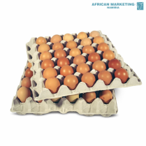 2255-0032 EGGS LARGE 10x30's TRAY *WENTSCHER