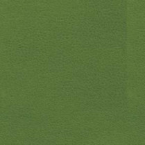 Brisa 4448 Apple Green (N/S B/O Only)