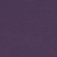 Brisa 9335 Eggplant (N/S B/O Only)