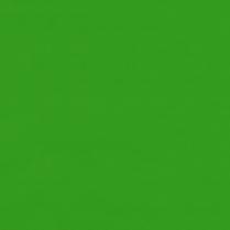 Flag  369/202 Scarab Green