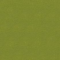Gemini 2566 Green Apple