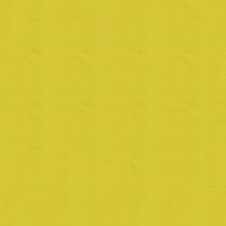 Sportlight 55 Yellow