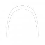 .012 Lower NiTi Thermaflex Single (10/Pack)