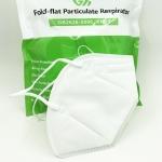 N95 - Fold Flat Particulate Respirator (10/BG)