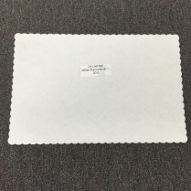 Placemat White 1000/cs (201-001)