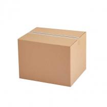 Pepperoni Seasoning 4.54Kg