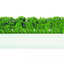 Dalebrook Parsley Divider 23.5