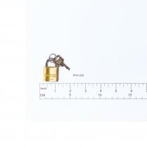 Padlock (55/25) w/ Key (5253)