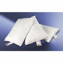 Pillow Gold JS Fiber Std 22 #22I1A