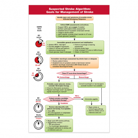 2015 AHA Algorithm for Suspected Stroke & Prehospital Stroke Scale Card - 25 Pack