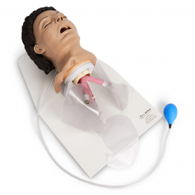 Life/form® Adult Airway Management Trainer with Stand