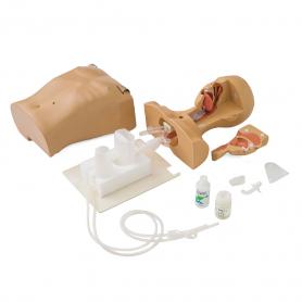 Koken Suction Tube Feeding Simulator