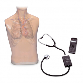 Life/form® Auscultation Trainer and Smartscope™ and Amplifier/Speaker System