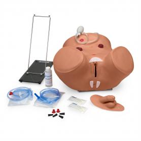 Gaumard® Advanced Patient Care Male & Female Catheterization Simulator