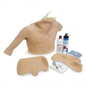 Vascular & Venipuncture Trainers   WorldPoint WorldPoint®