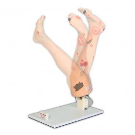 VATA Display Stand for Vinnie or Annie Insufficiency Leg