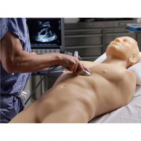 CAE Blue Phantom™ FAST Exam Real Time Ultrasound Training Model