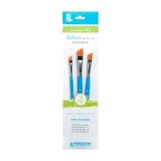 Princeton Select Value Brush Set #12