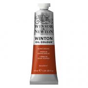 Winsor & Newton Winton Oil Color Burnt Sienna 37ml
