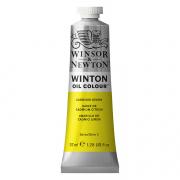 Winsor & Newton Winton Oil Color Cadmium Lemon 37ml