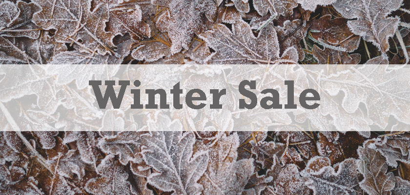 winter sale with frozen leaves