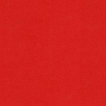 Allsport 14 Bright Red
