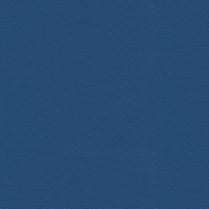 Allsport 3006 Royal Blue