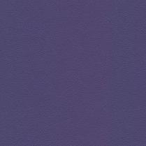 Allsport 3009 Bright Violet