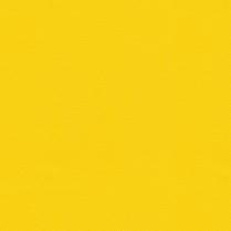 Allsport 505 Nu Bright Yellow