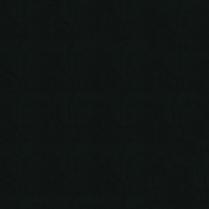 Burkshire 43 Black