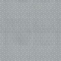 """Evolution 55"""" # 9 Shadow Grey"""