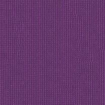 Extrablock Purple