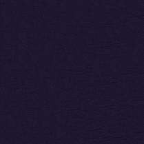 Inspired 1009 Dark Violet