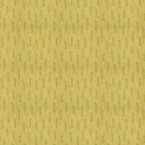 Invision 6204 Citron