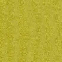 Premier 54 Citron