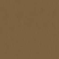 Premier 608 Sandstone