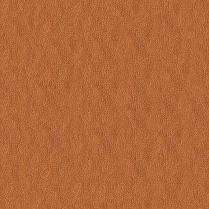 Shimmer 405 Copper