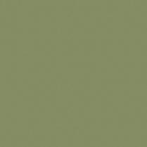 Silk 2009 Green