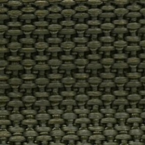 1in. Poly Webbing Olive