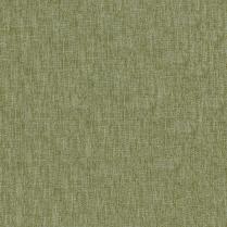 Yates 202 Lichen