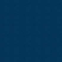 Zodiac 21 Blue