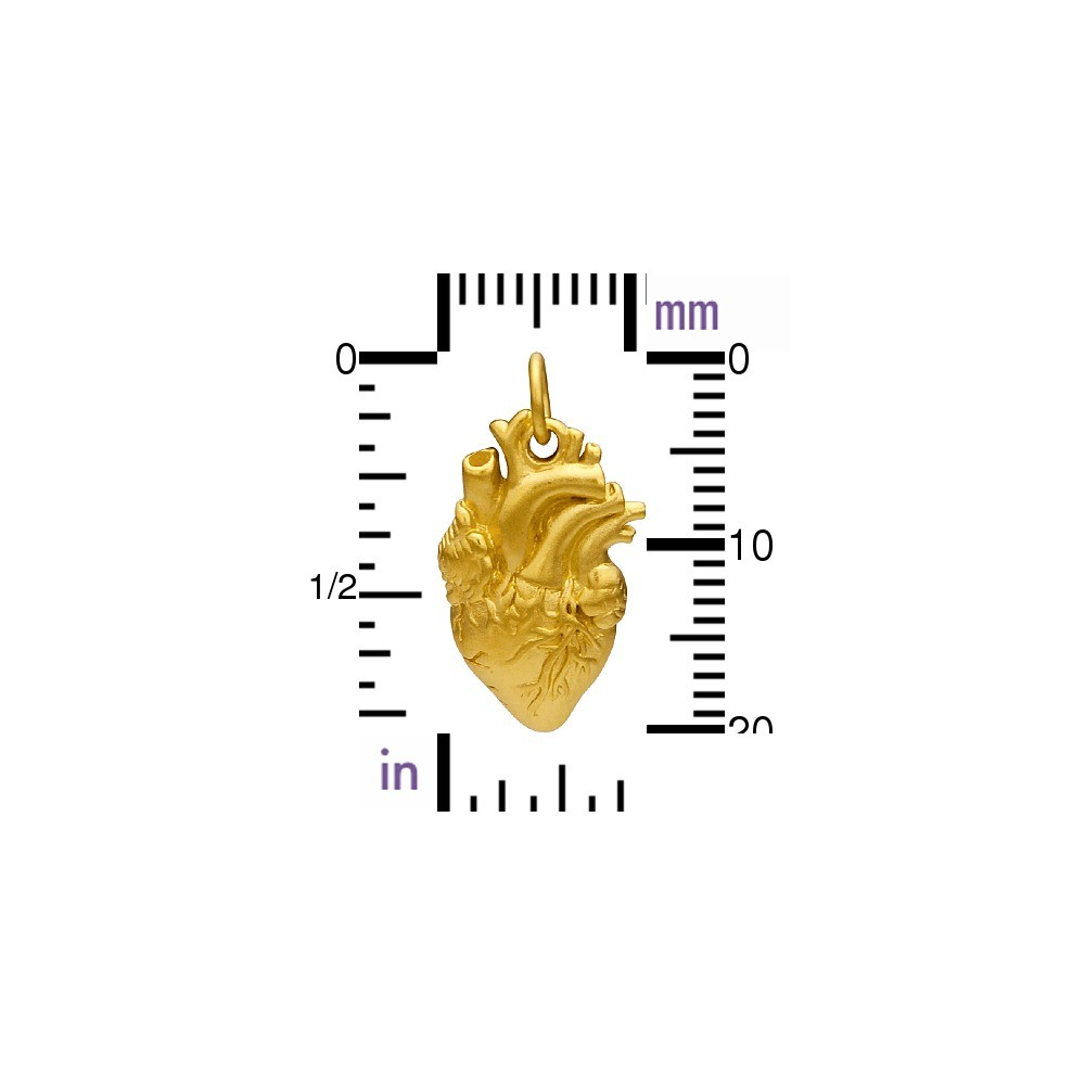 Gold Charm - Anatomical Heart with 24K Gold Plate 21x10mm