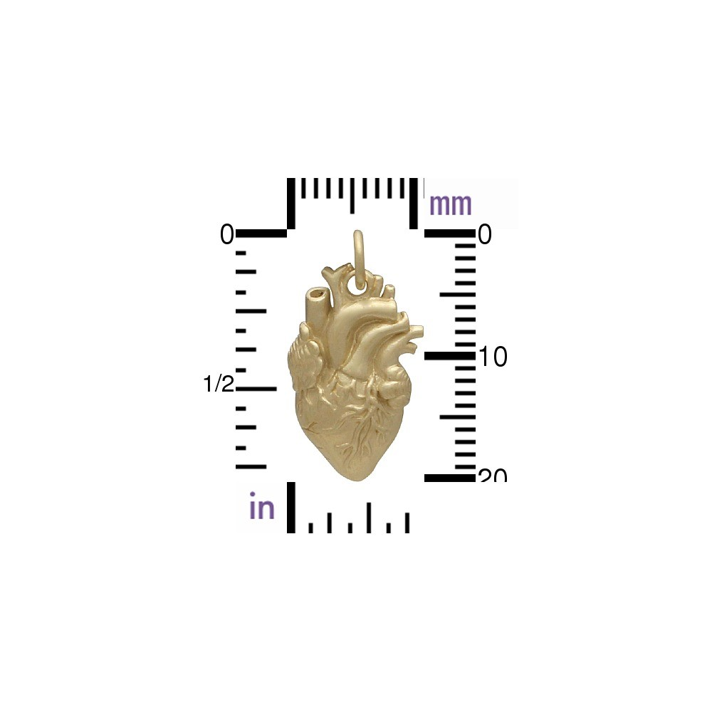 Gold Charm - Anatomical Heart with 14K Gold Plate 21x10mm